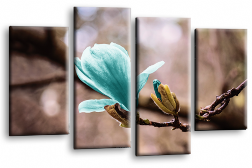 Floral Flower Wall Art Picture Grey Teal Spring Print
